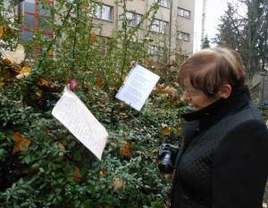 Poezie v parku